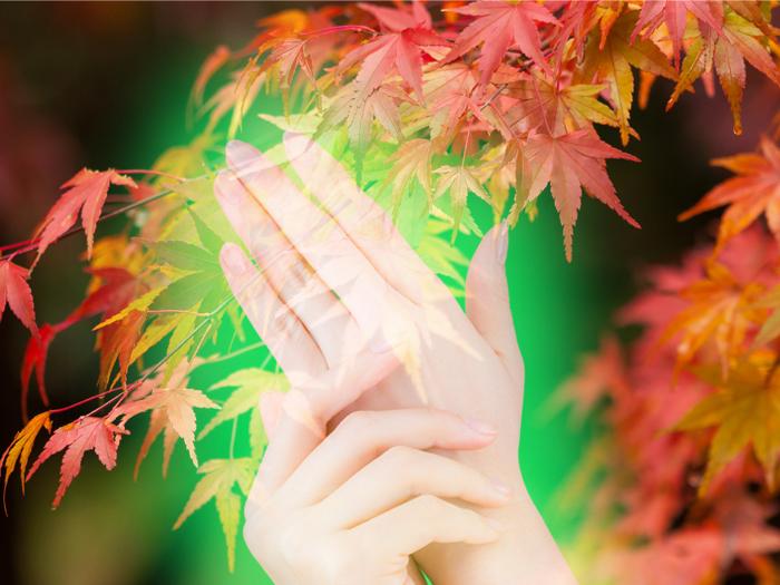 【受付終了しました】自分を幸福にするための手相教室 ~名勝・清澄庭園で喧騒から離れて自分を見つめる~