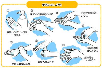 正しい手洗いの仕方