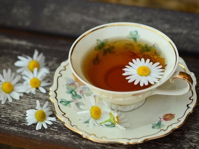 内側からキレイに♪お茶の美容効果がすごいんです!