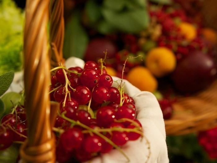 2017年の注目度No.1♪レッドフルーツの栄養とその効果とは?